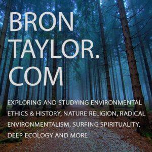 PROFESSOR BRON TAYLOR