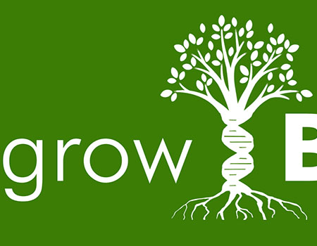 growBold